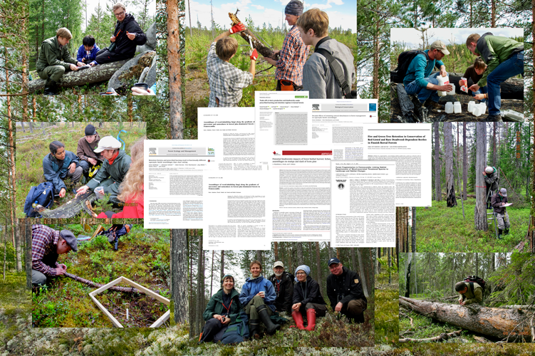 Introducing image of the group Research Group on Forest Ecology and Biodiversity