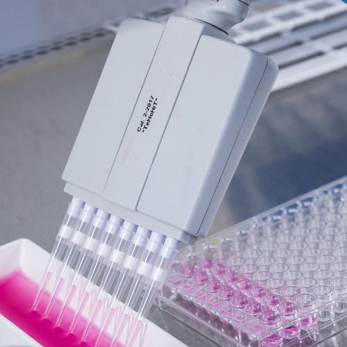 3. kuva tutkimusryhmästä Immuno-Oftalmologia