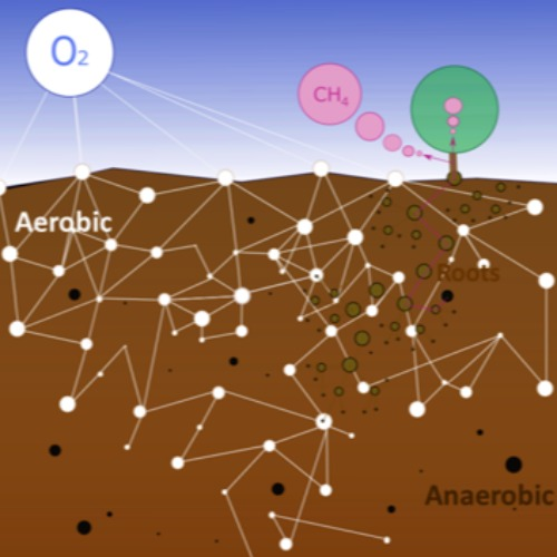 METNET - Methane and soil - tree networks: Adding dimensions to greenhouse-gas studies´s Profile image