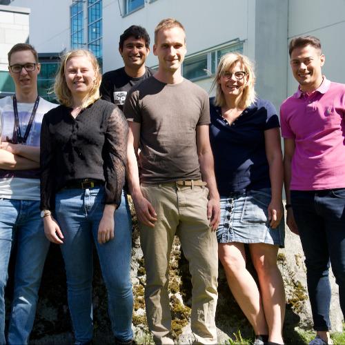 4. Carousel image of group  Redox signaling (Anna-Liisa Levonen group)