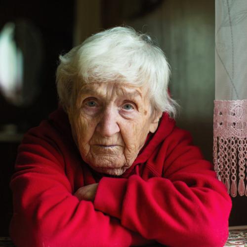 Image of  GERIT – gerontologinen sosiaalityö erityisen tuen tarpeisiin vastaamassa