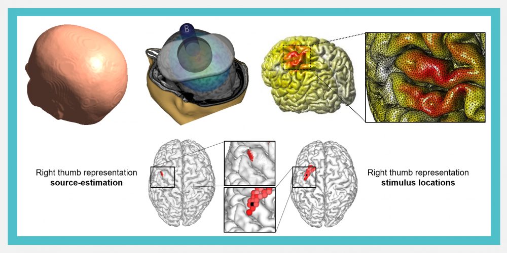 Introducing image of the group Neuromodulation research group