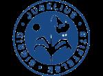 Biomedical Spectroscopy Laboratory (biomedspect) funder logo